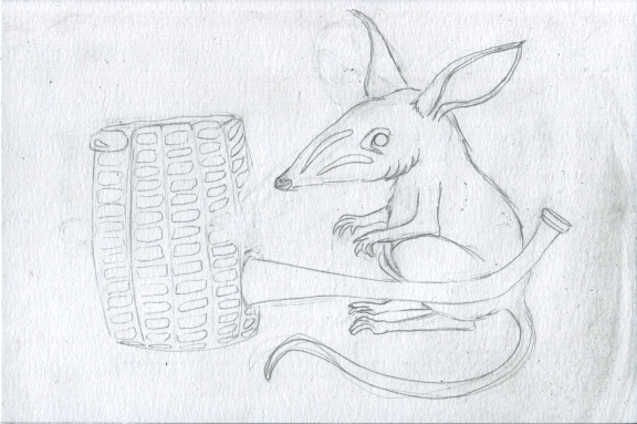 3 - Bilbies and Corn Cob Pipe Sketch3