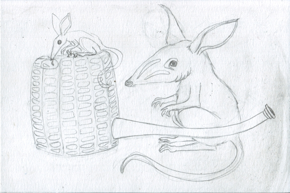 4 - Bilbies and Corn Cob Pipe Sketch4