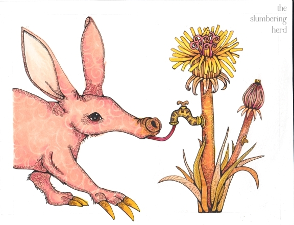 7- Aardvark Dandelion Color Final