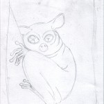 1 - A Shy Tarsier Named Nee, Sketch1