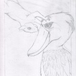 2 - Shoebill and Squirrel Sketch2