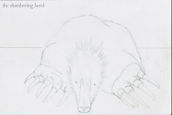 3 - Mole Named Dee Sketch3