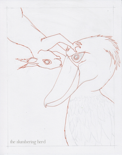 4 - Shoebill and Squirrel Ink1
