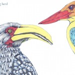09 Hornbill and Kingfisher Color1