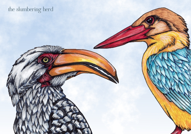 13 Hornbill and Kingfisher digital light