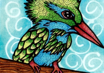Green Crested Kingfisher ATC