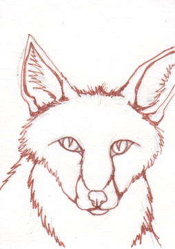 02 Red Fox Ink