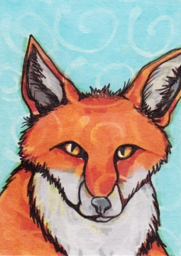 03 Red Fox Color1