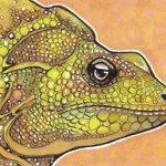Basilisk Lizard, A Master of Zen
