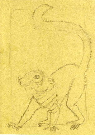 01 Brown Lemur 5x7 sketch1