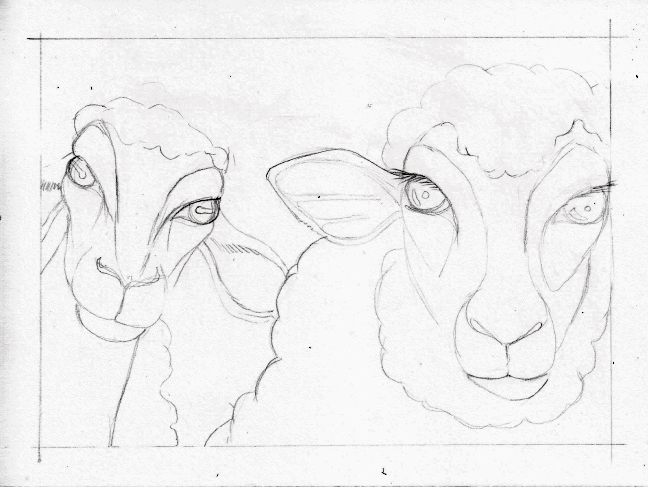 02 Two Sheep sketch2