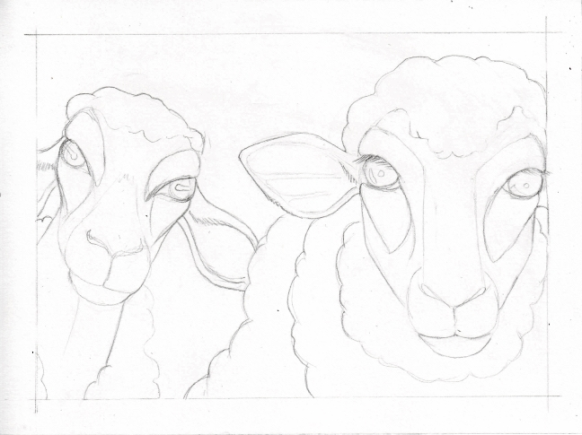03 Two Sheep sketch3