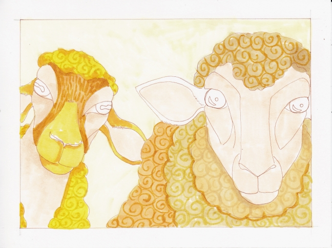 06 Two Sheep color2