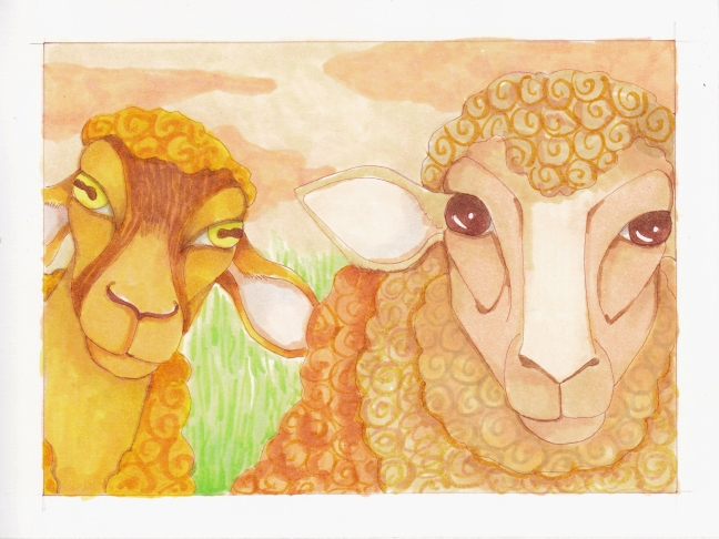 07 Two Sheep color3