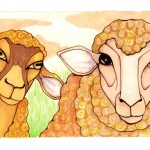 12 Two Sheep ink4
