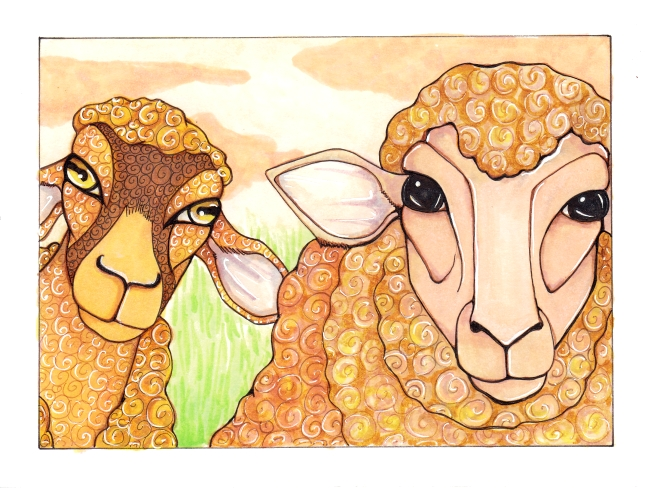 15 Two Sheep color7